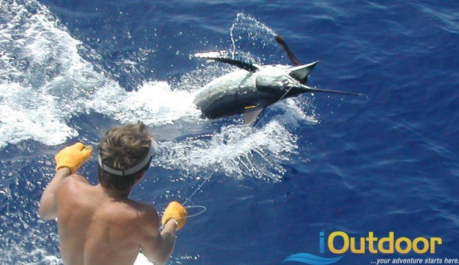 Deep sea fishing 10 outdoor adventures for fishing for Deep sea fishing jacksonville